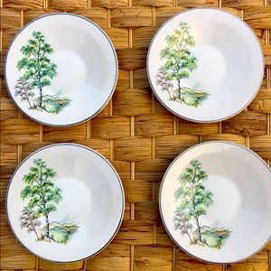 Vintage Silver Birch Palissy 6x Saucers (Spare)
